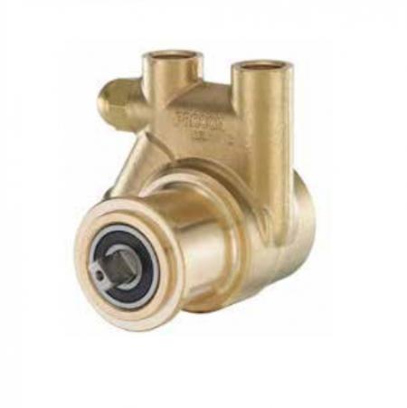 Procon Pump Brass 250L (Te-Mix25old)